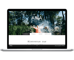 Exemple du Template payant Wix