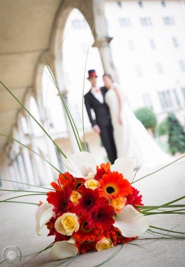 Photographe mariage - Alexandre Bienfait Photographe - photo 67
