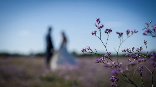 Photographe mariage - PETIT MONDE - photo 5