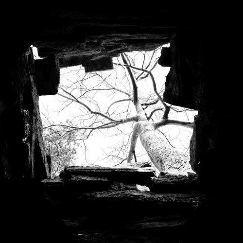 Photographe - LACENE CHRYSTELE - photo 19