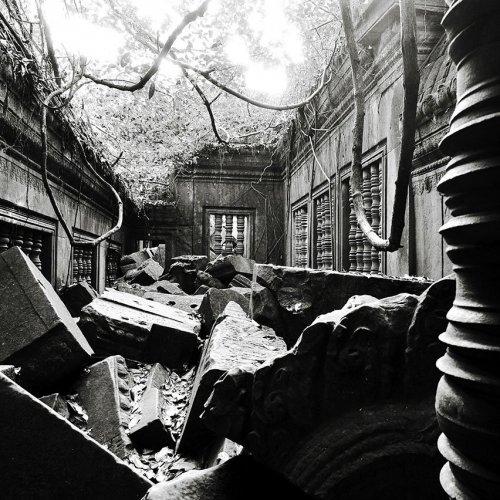 Photographe - LACENE CHRYSTELE - photo 23