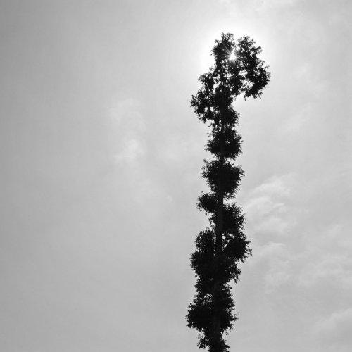 Photographe - LACENE CHRYSTELE - photo 21
