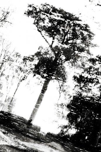 Photographe - LACENE CHRYSTELE - photo 18