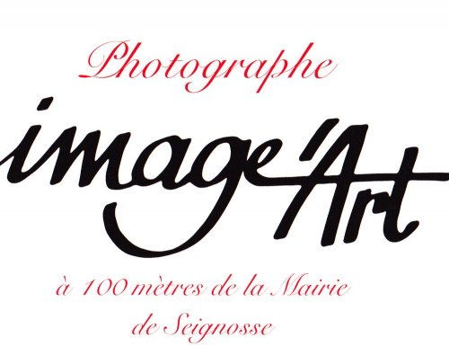 Photographe mariage - image'art - photo 7