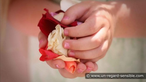 Photographe mariage - Un Regard Sensible - photo 73