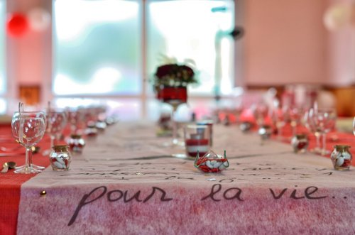Photographe mariage - Cédric DUBOIS - photo 53