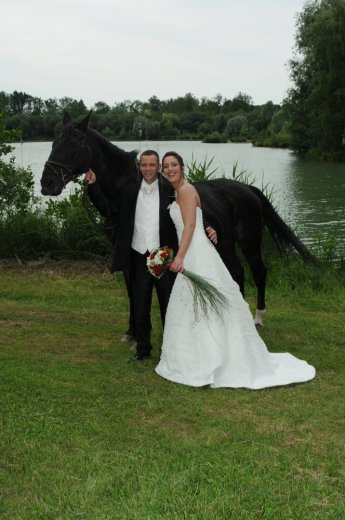Photographe mariage - PHAN Georges - photo 81