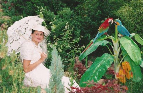 Photographe mariage - PHAN Georges - photo 151