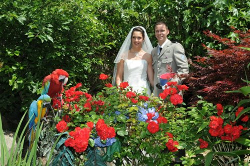 Photographe mariage - PHAN Georges - photo 90