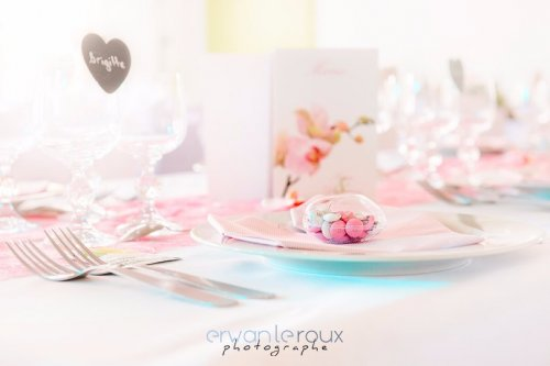 Photographe mariage - Erwan Le Roux Photographe - photo 13