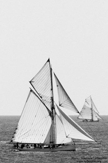 Photographe - Stéphane LeDauphin - photo 1