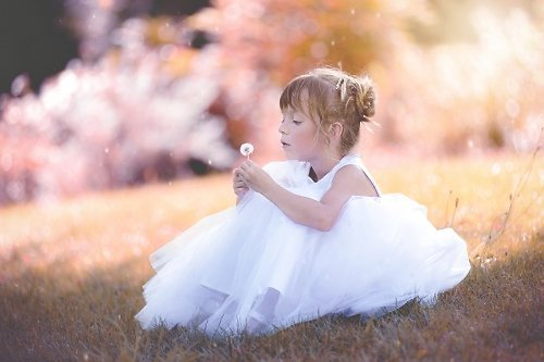 Photographe mariage - Philippe B - photo 40