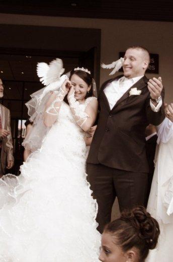 Photographe mariage - Oeil Des Pros - photo 8