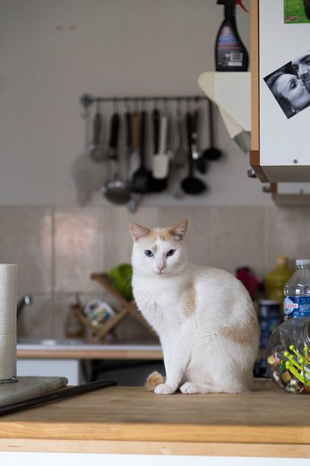 Photographe mariage - Bernard Photographies - photo 32