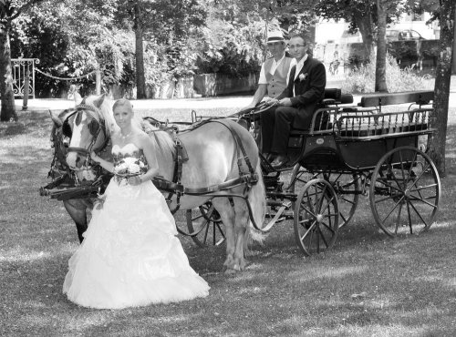 Photographe mariage - HP PHOTO NUMÉRIQUE - photo 3