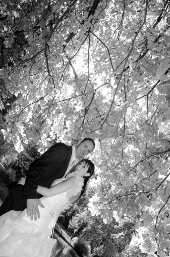 Photographe mariage - FOTOLAB - photo 15