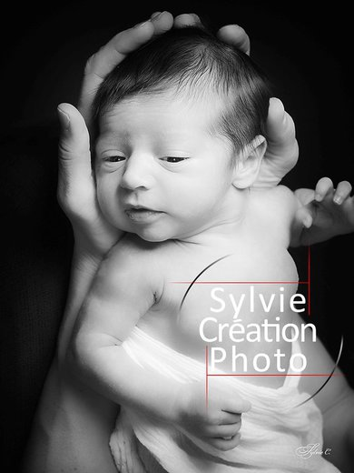 Photographe mariage - Sylvie Création Photo - photo 63