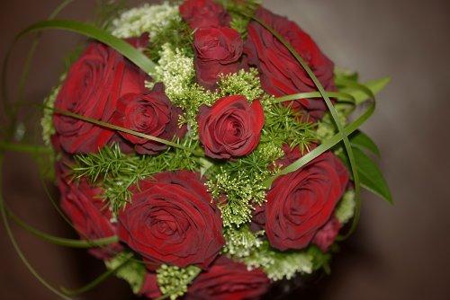 Photographe mariage - vincent roques - photo 6