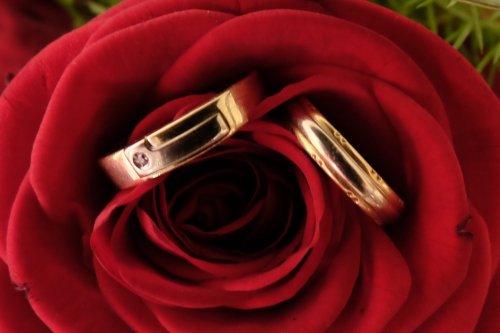 Photographe mariage - vincent roques - photo 4