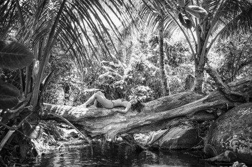 Photographe mariage - Photos Island - photo 48