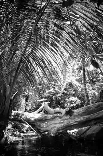 Photographe mariage - Photos Island - photo 49