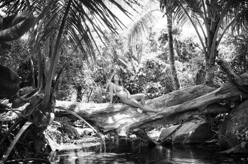 Photographe mariage - Photos Island - photo 46