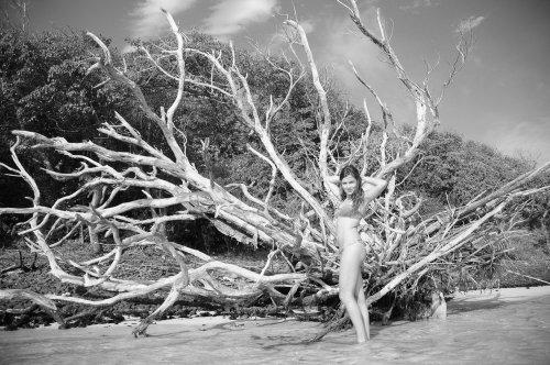Photographe mariage - Photos Island - photo 32
