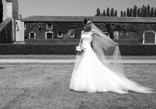 Photographe mariage - Jean-Paul COLLINEAU   - photo 5