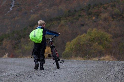 Photographe - Jean Pierre Boeye  Photographe - photo 7