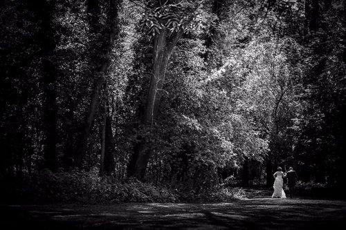 Photographe mariage - Yohann PETIT Photographe - photo 14