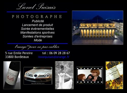 Photographe mariage - Lionel Puisais - photo 1