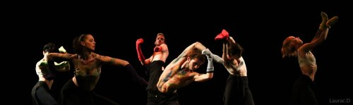 Photographe mariage - Damien.L (D2LPHOTO) - photo 3