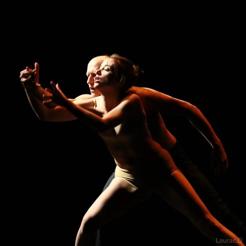Photographe mariage - Damien.L (D2LPHOTO) - photo 2