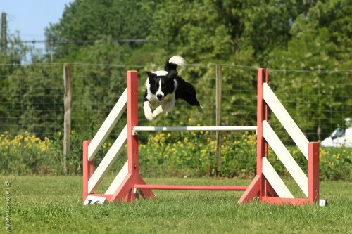 Photographe mariage - Damien.L (D2LPHOTO) - photo 14