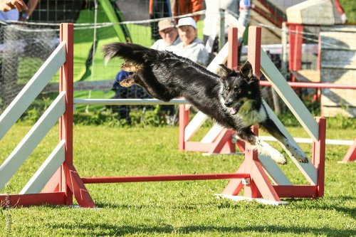 Photographe mariage - Damien.L (D2LPHOTO) - photo 12