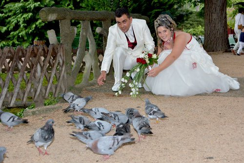 Photographe mariage - www.graphicland.user.fr - photo 16