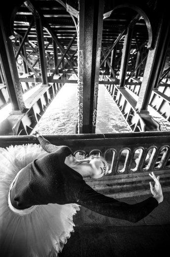 Photographe - David Elofer Photographe © - photo 47