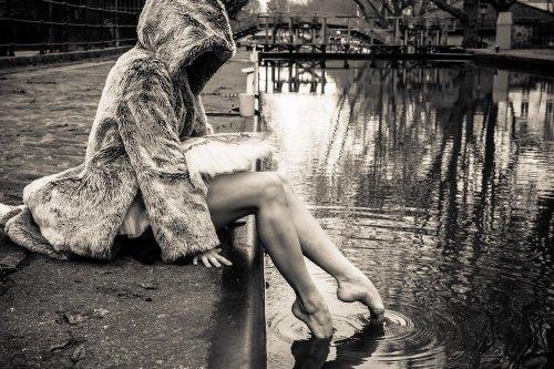 Photographe - David Elofer Photographe © - photo 17