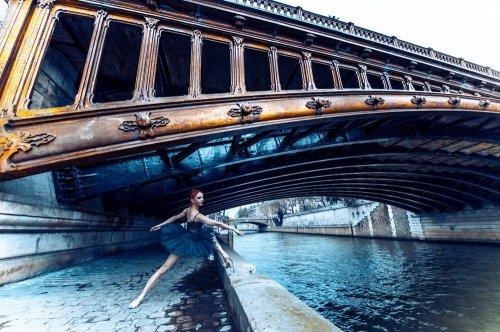 Photographe - David Elofer Photographe © - photo 36