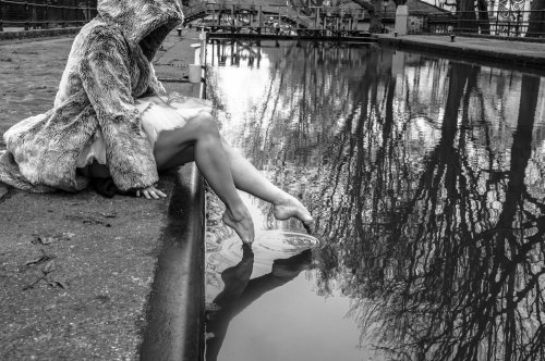 Photographe - David Elofer Photographe © - photo 15