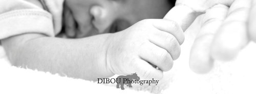 Photographe - DIBOU Photography - photo 3