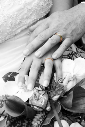 Photographe mariage - Studio Photo G.Cassaro - photo 26
