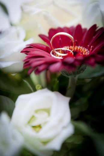 Photographe mariage - Jimages - photo 10