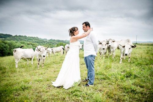 Photographe mariage - KAMERAs - photo 76
