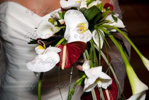 Photographe mariage - G PACHOUTINE - photo 35
