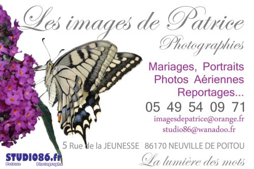 Photographe mariage - IMAGES DE PATRICE - photo 13