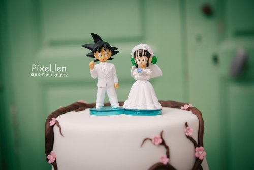 Photographe mariage - Pixel.len Photography - photo 31