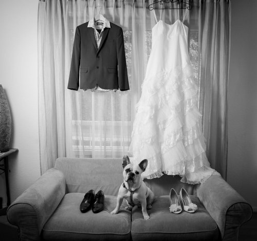 Photographe mariage - Pixel.len Photography - photo 73