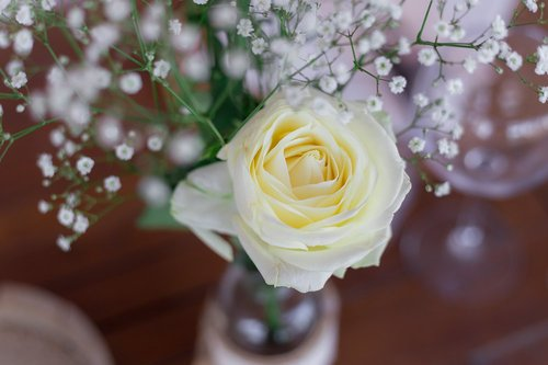 Photographe mariage - Thomas Audiffren - photo 17