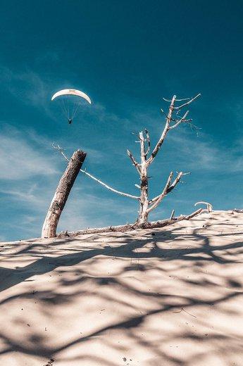 Photographe - Olivier Sabatier  - photo 1